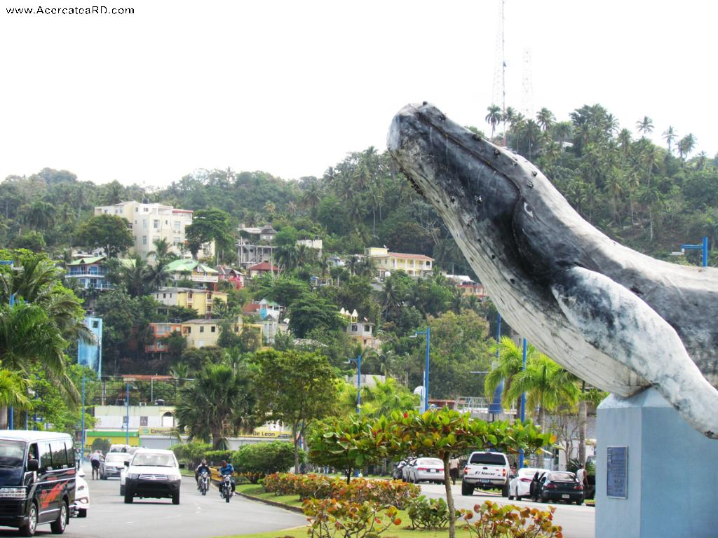 Samaná - Monumento a la Ballena Jorobada en la Provincia - Samaná